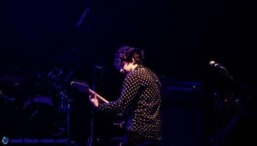 The Chameleons_live40