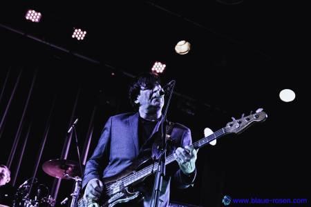 The Chameleons_live17