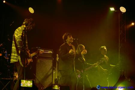 The Chameleons_live2
