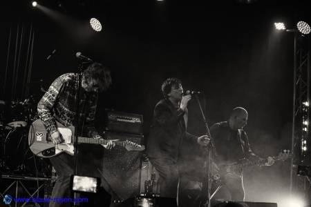The Chameleons_live1