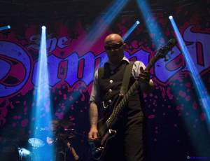 TheDamned11