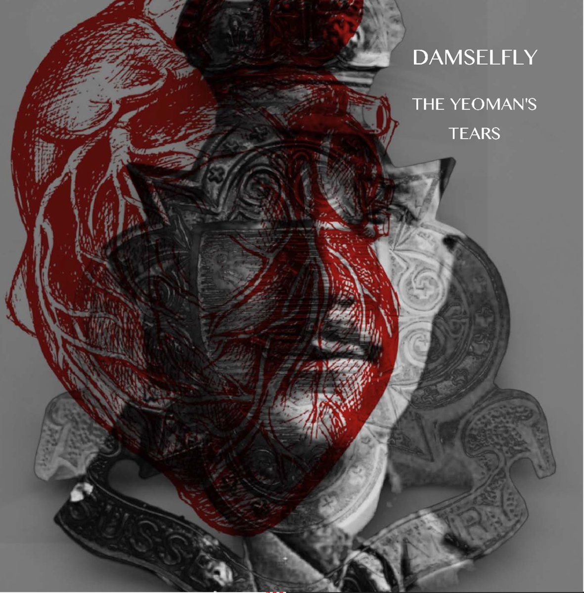 DAMSELFLY cover