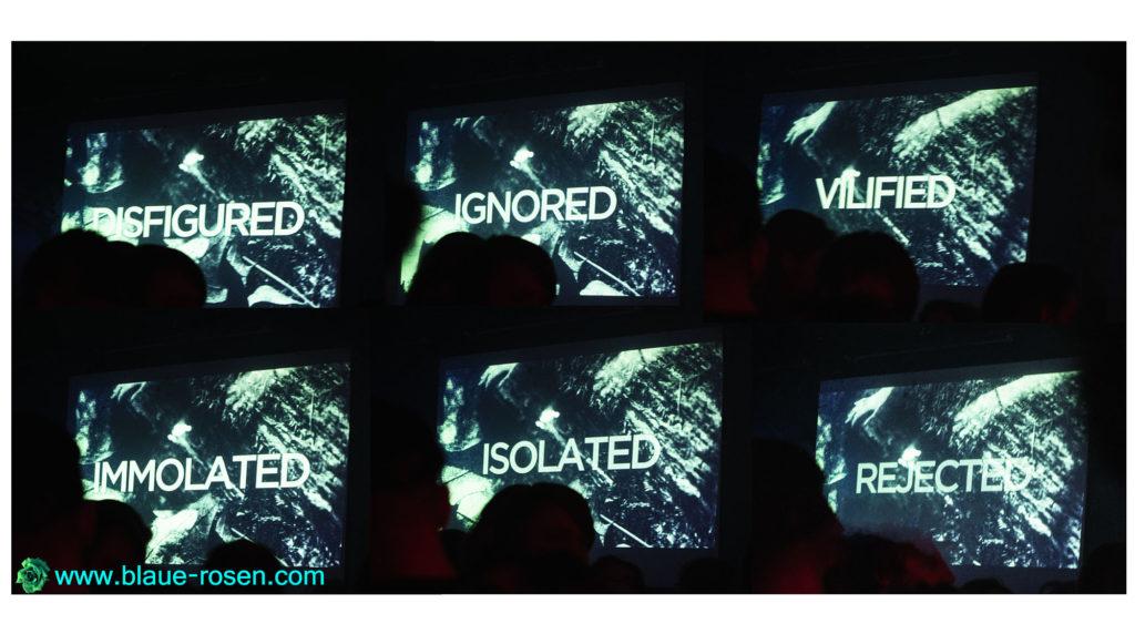 Riotmiloo collage