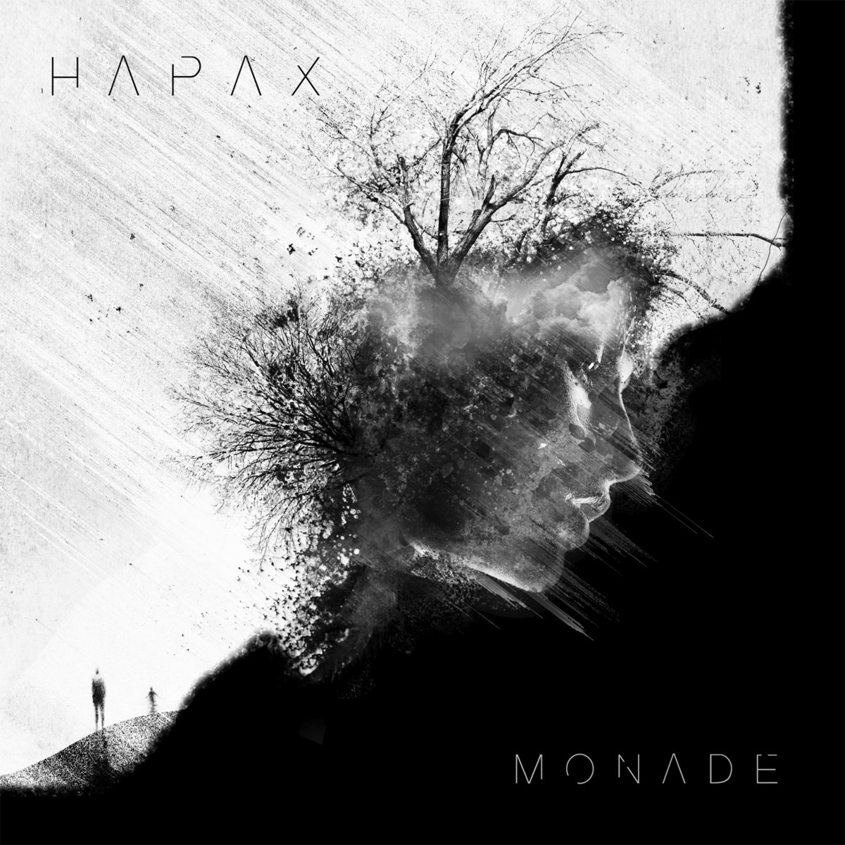 HAPAX_cover