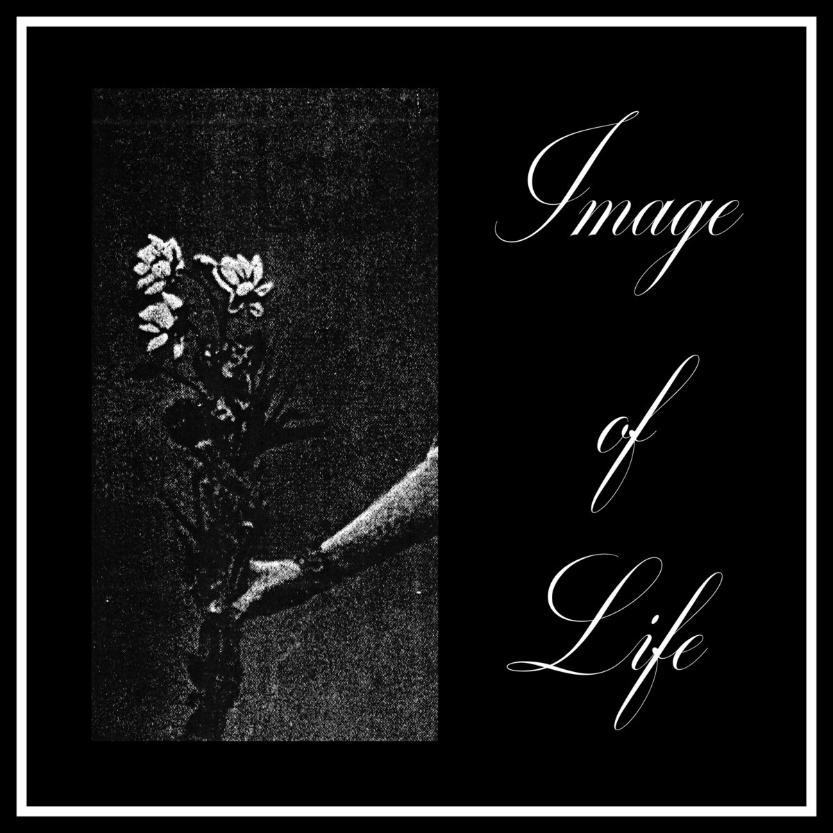 Image of Life cover