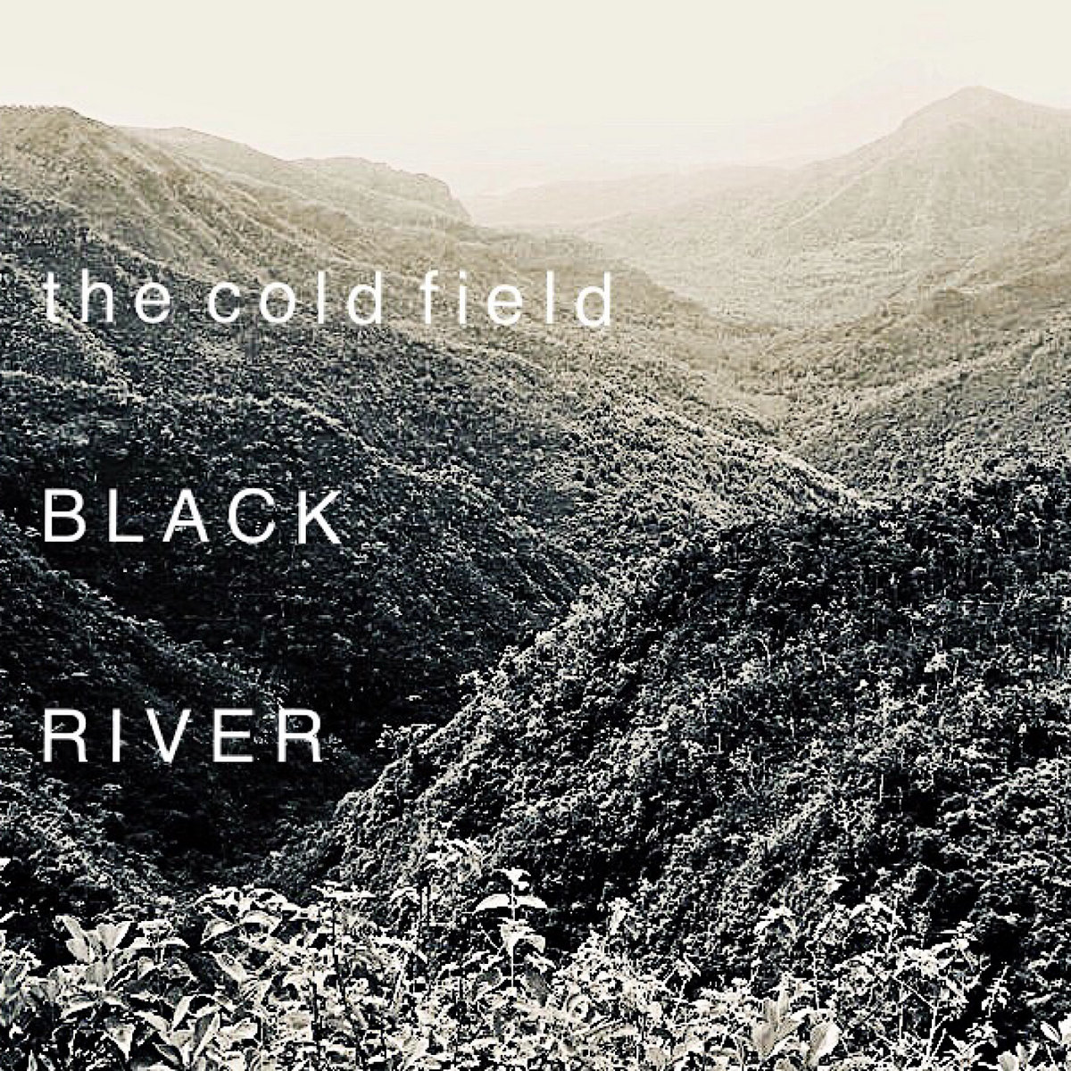 The Cold Field cover