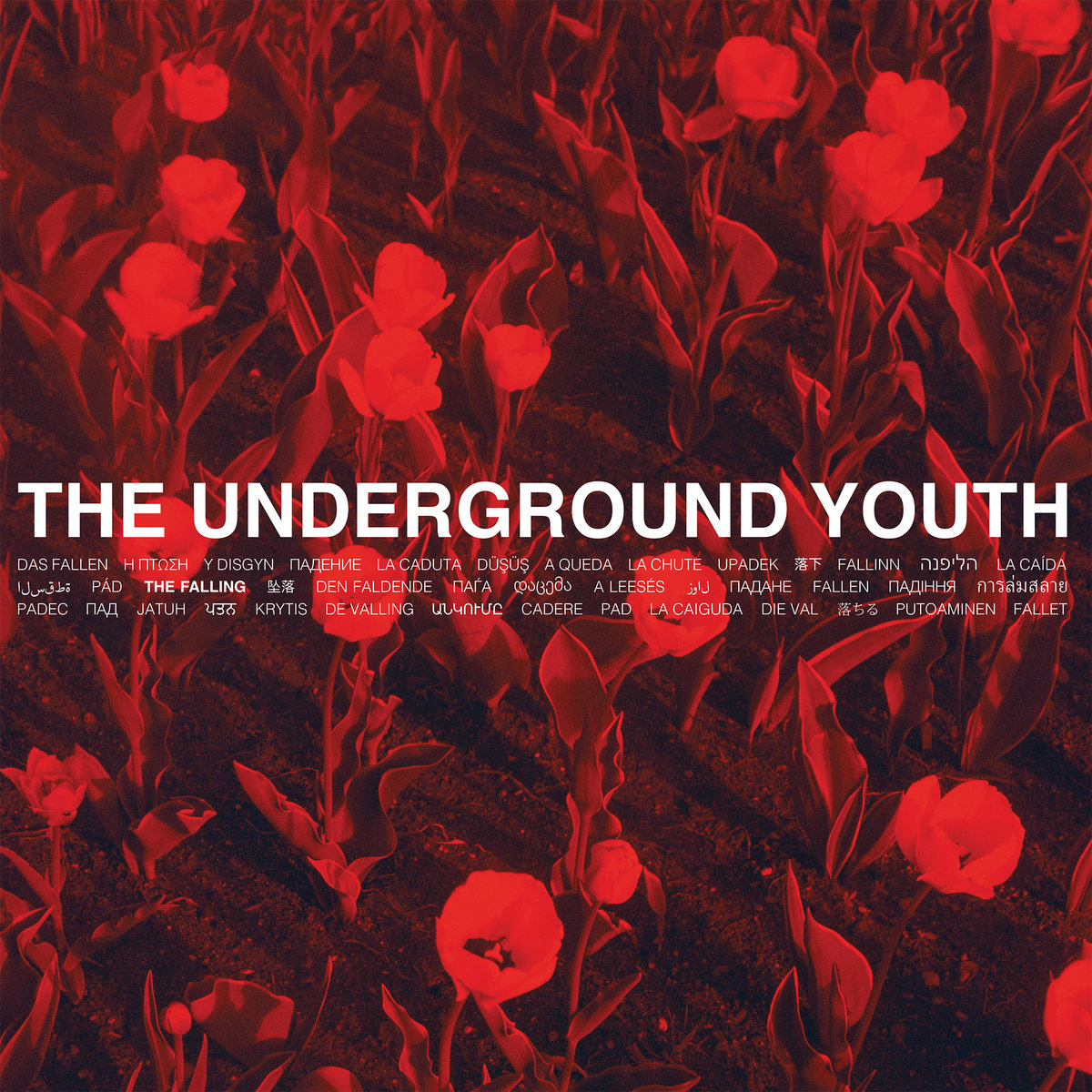 The Underground Youth cover