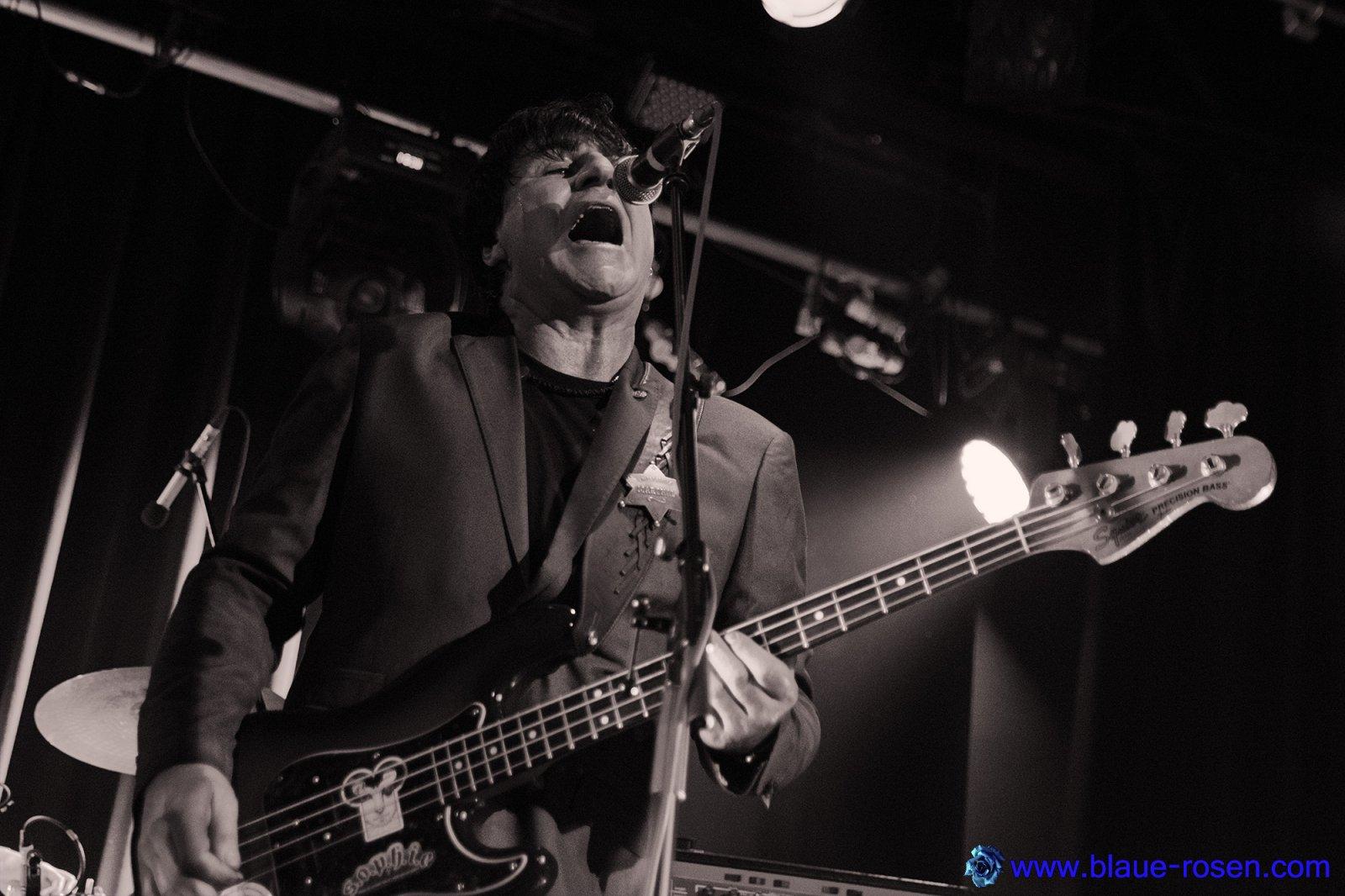 The Chameleons_live10