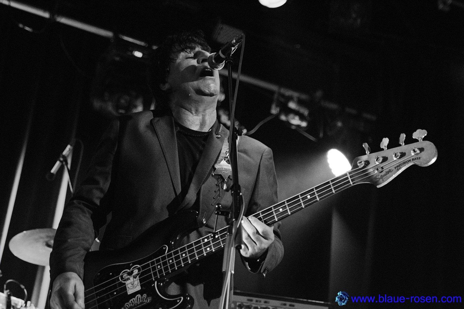 The Chameleons_live9