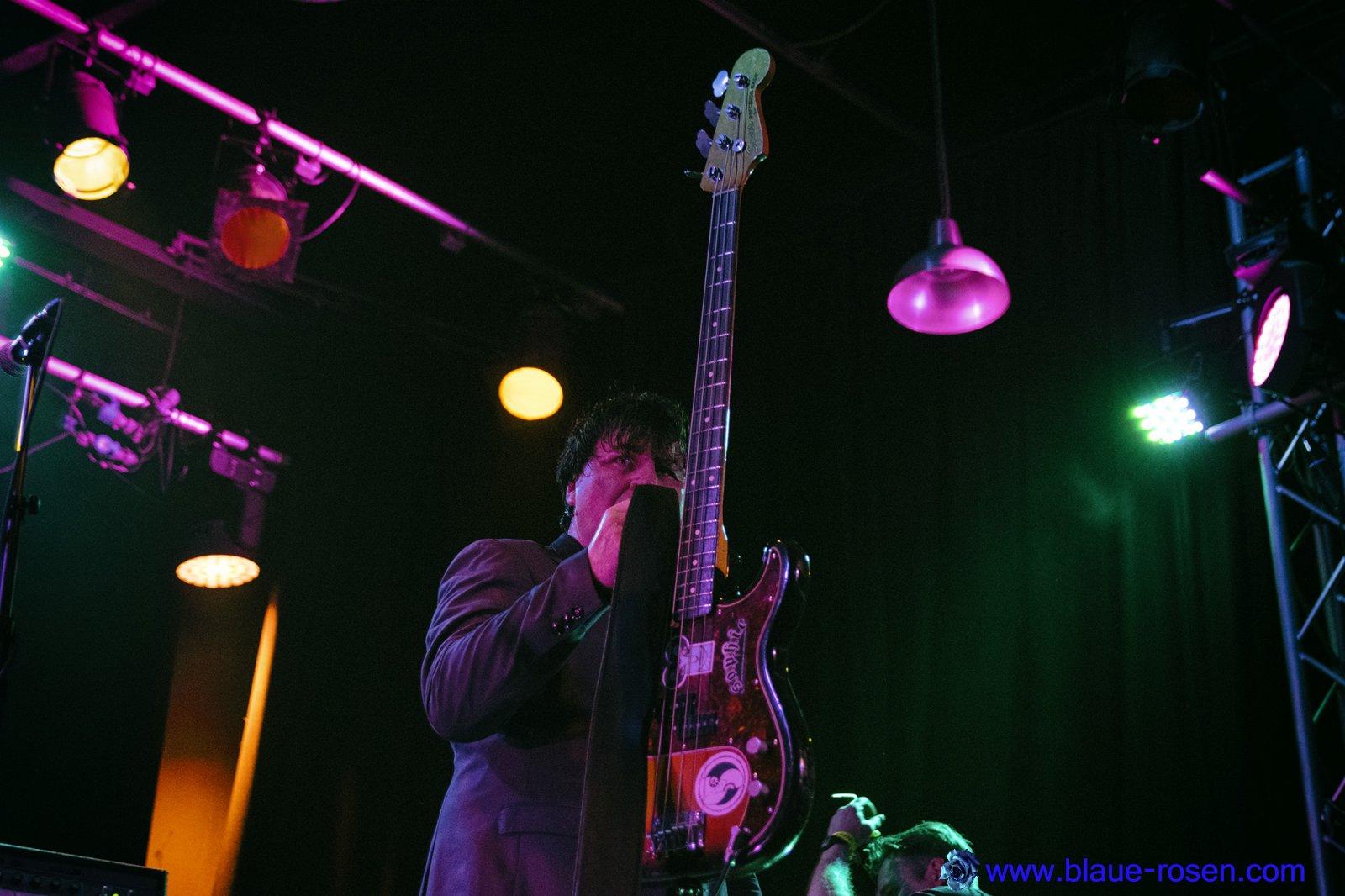 The Chameleons_live6
