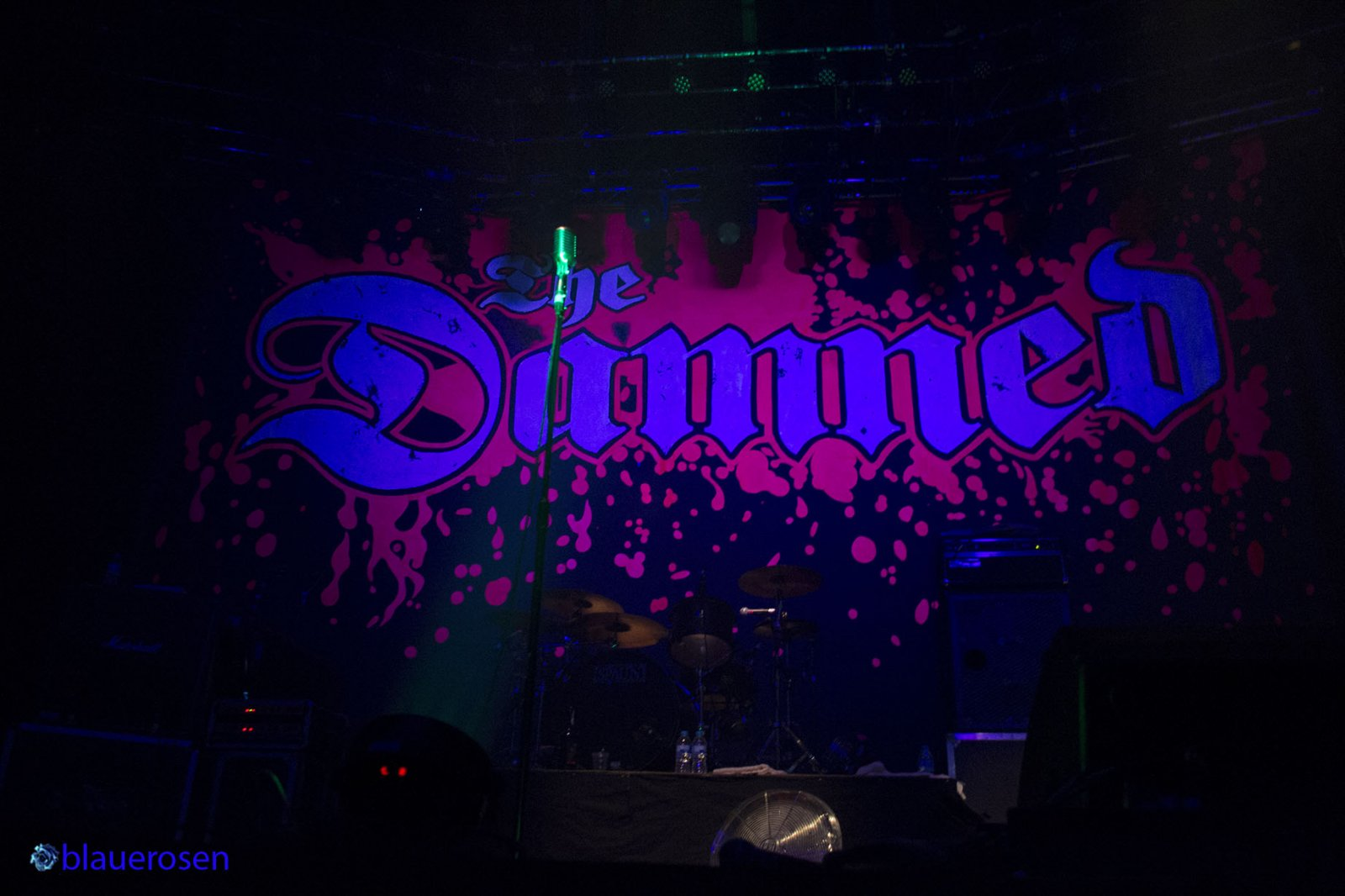 TheDamned1