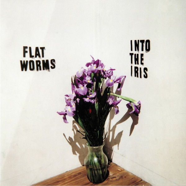 Flat Worms-cover