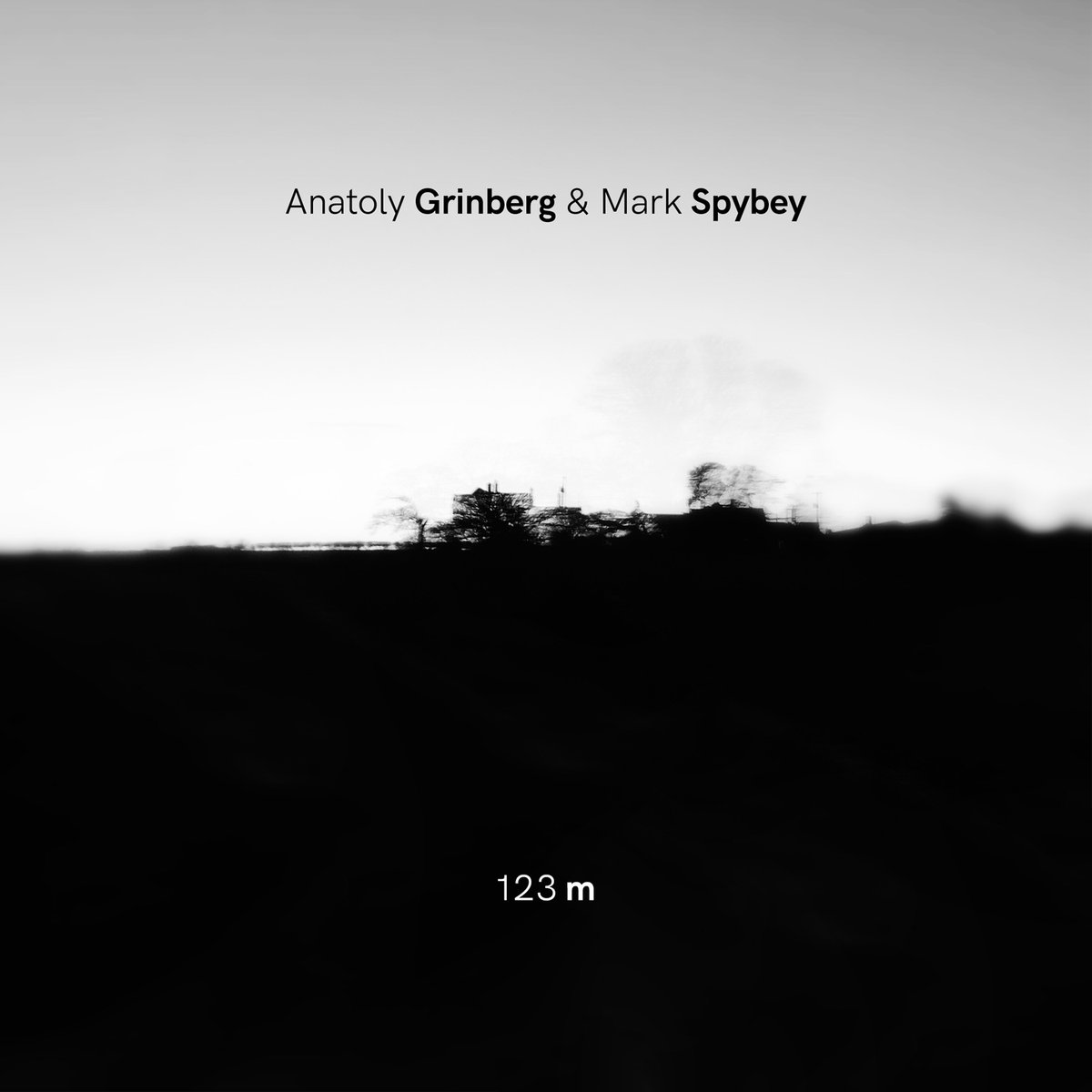 Anatoly Grinberg& Mark Spybey cover